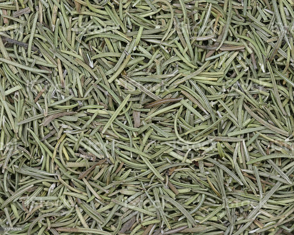 dried rosemary stock photo