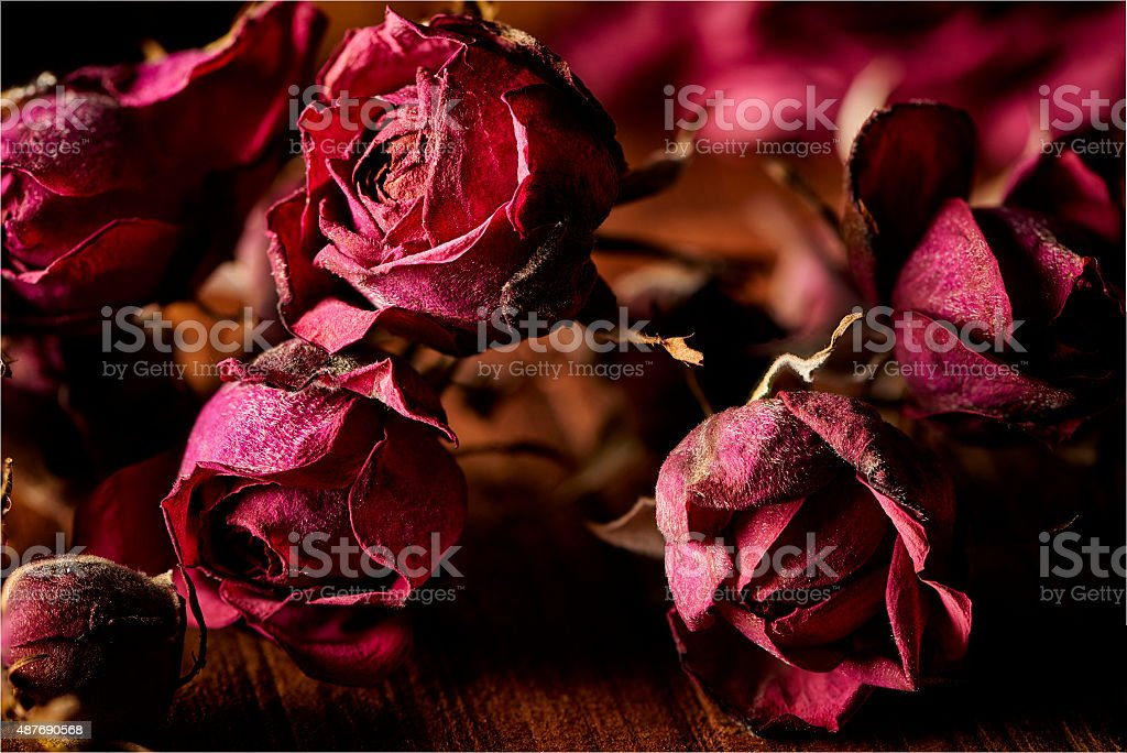 Dried roses for decoration purpose stock photo