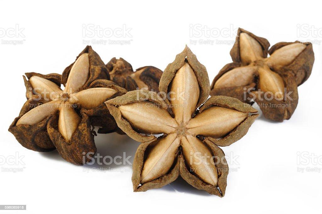 dried sacha inchi royalty-free stock photo