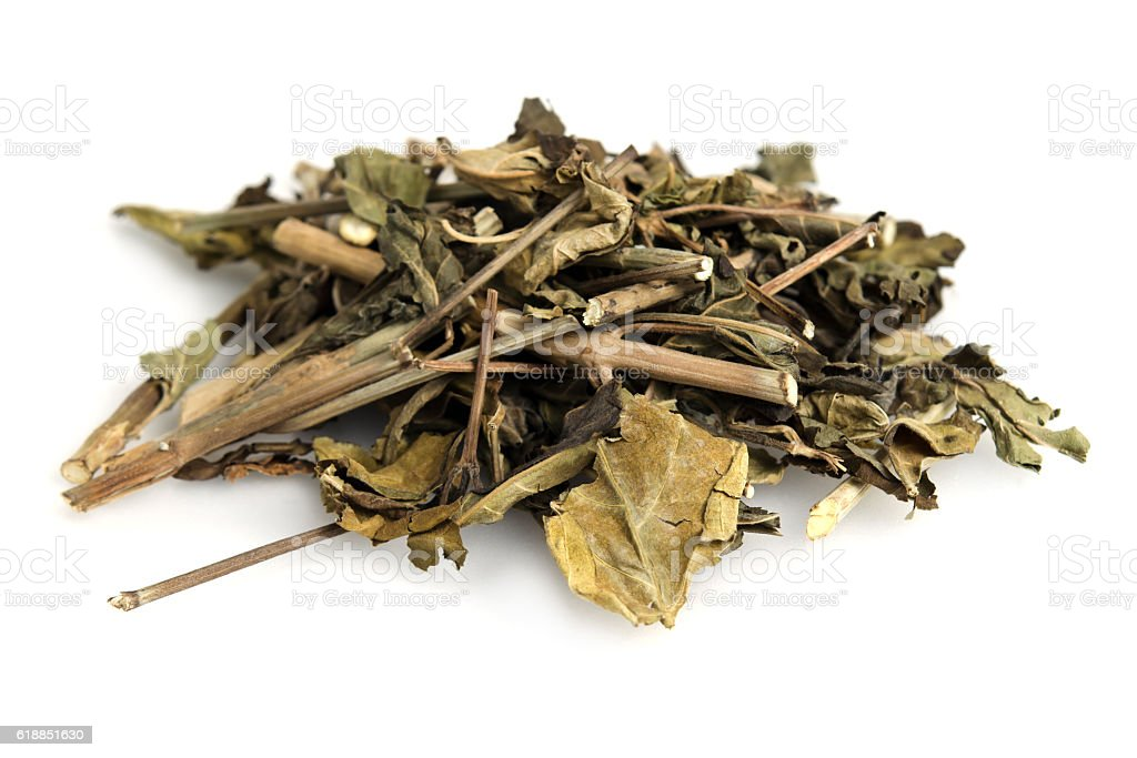 Dried snake jasmine, Dainty spure, white crane flower or scienti stock photo