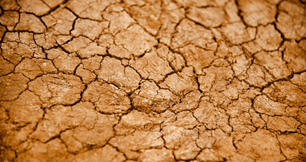 Dried soil surface with cracks unique photo stock photo