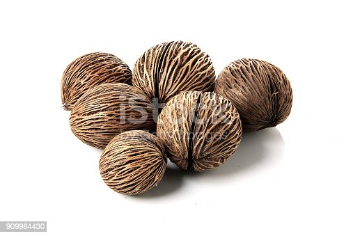istock Dried Suicide seed, Pong-pong, Othalanga (Cerbera oddloam) fruit, for interior decoration, isolated on white background. 909964430