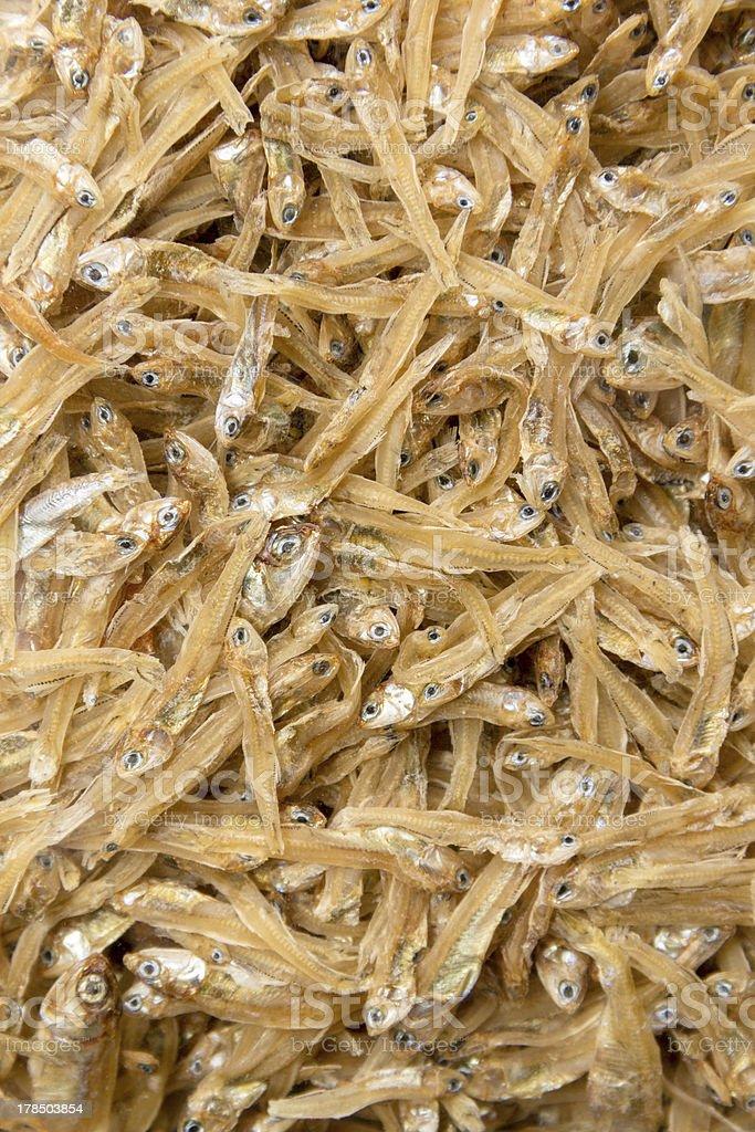 Dried tiny fish royalty-free stock photo