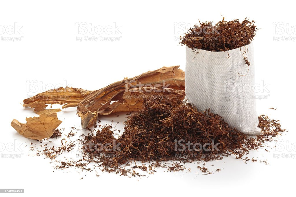 Dried  tobacco. stock photo