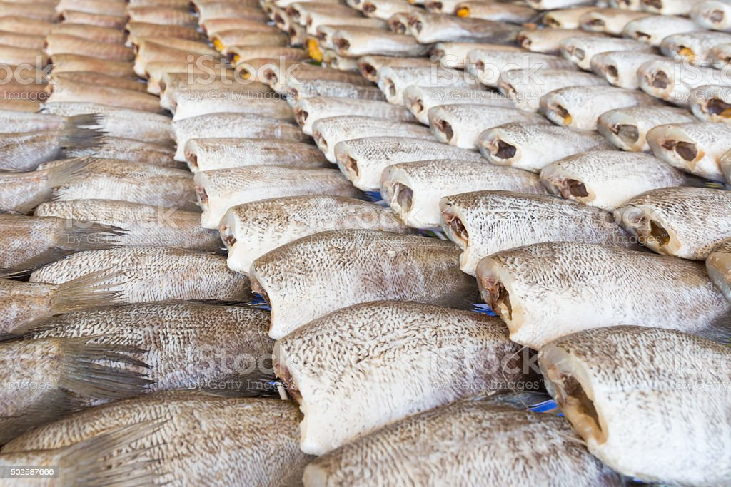 Dried Trichogaster pectoralis fish stock photo