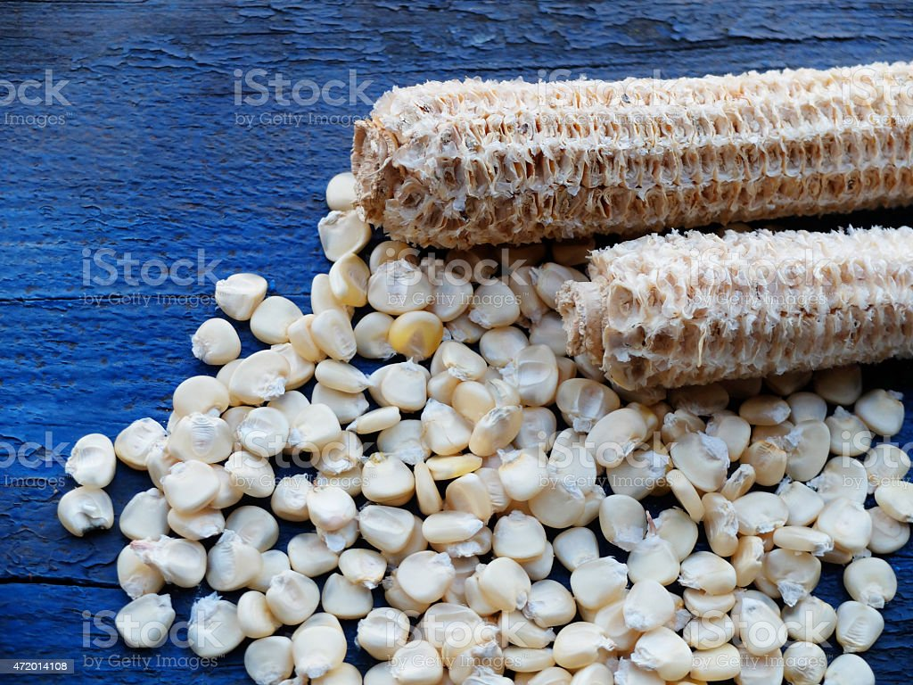 Dried White Corns with Corncob on a blue coloured wood. stock photo