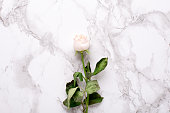 istock Dried white rose on marble background top view 1132994708