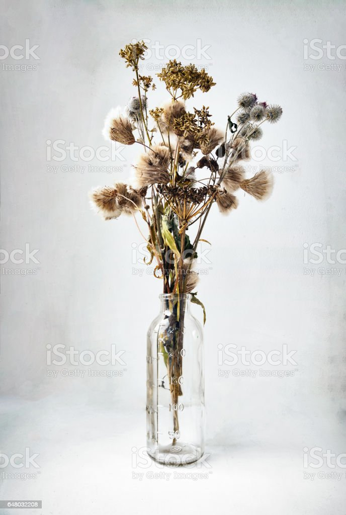 Dried wild flowers and herbs bouquet in a glass bottle stock photo