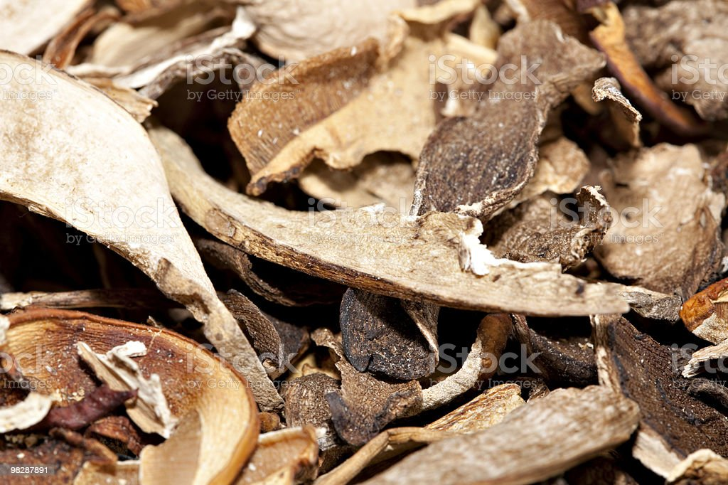 dried wild mushrooms royalty-free stock photo