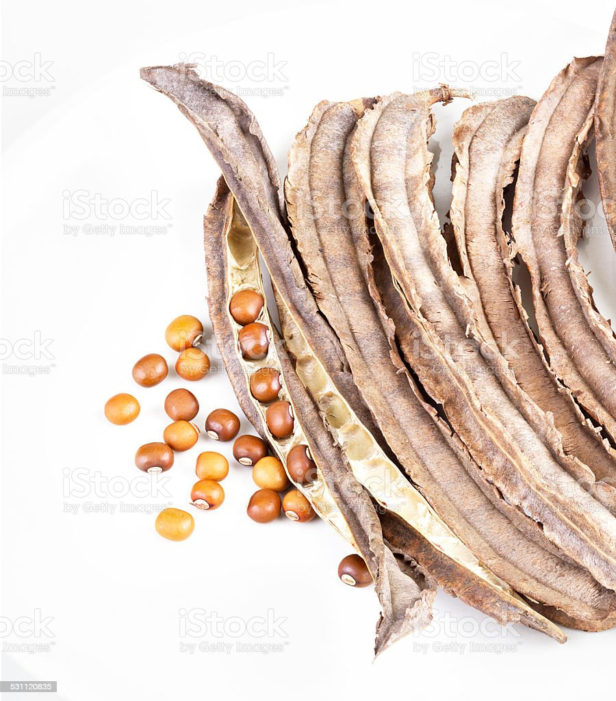 dried Winged Bean seed and bean pod on white dish stock photo