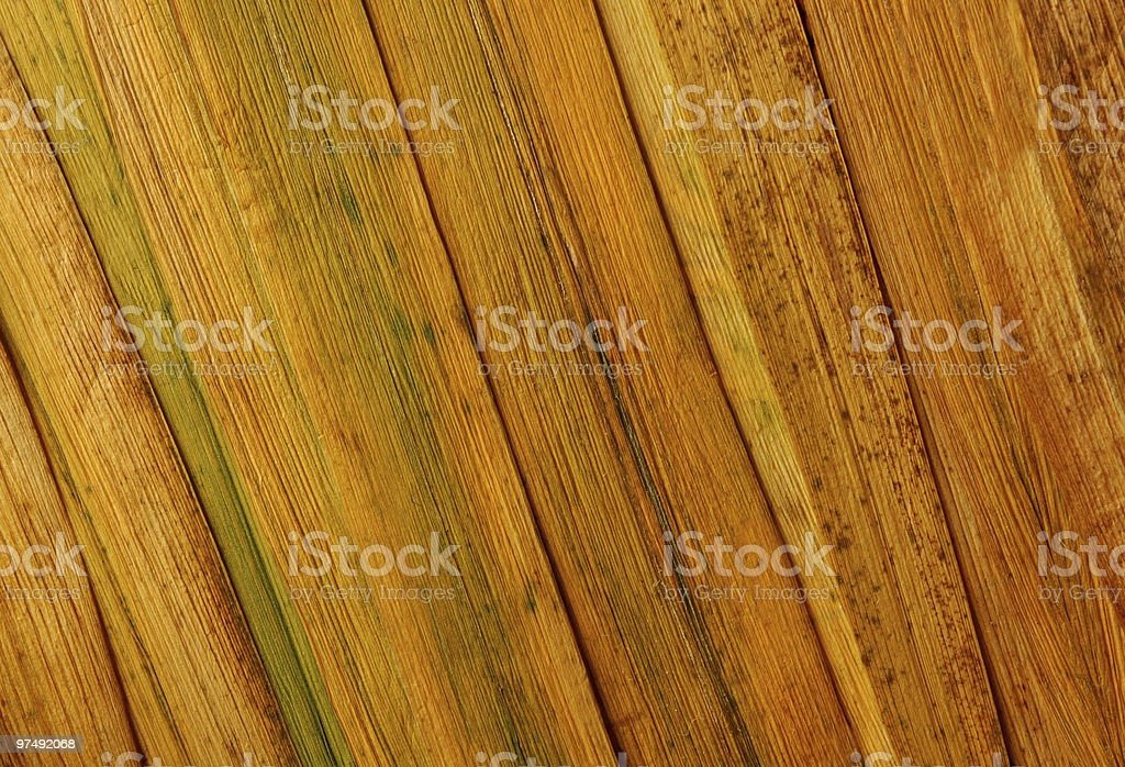 Dried yellow grass royalty-free stock photo