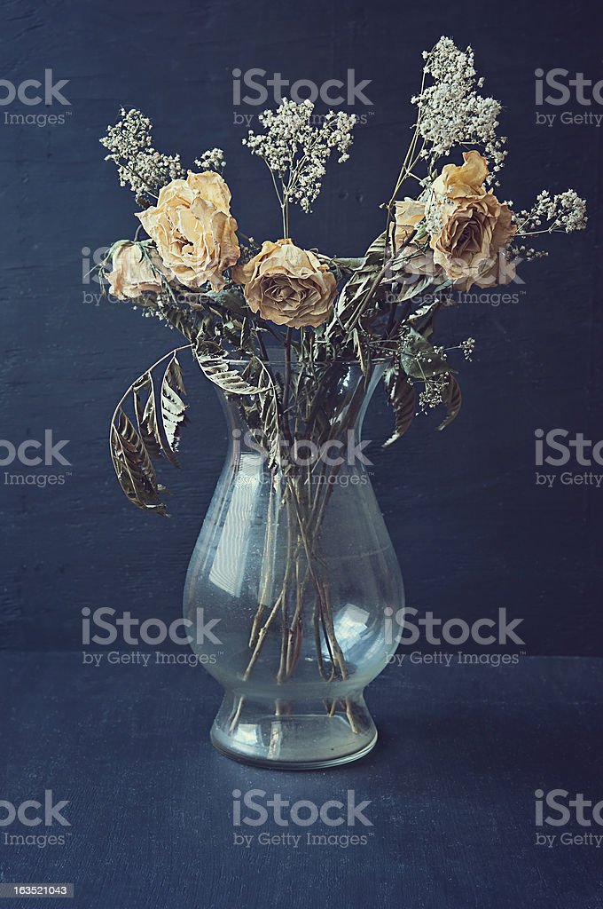 Dried Yellow Roses in a Vase stock photo