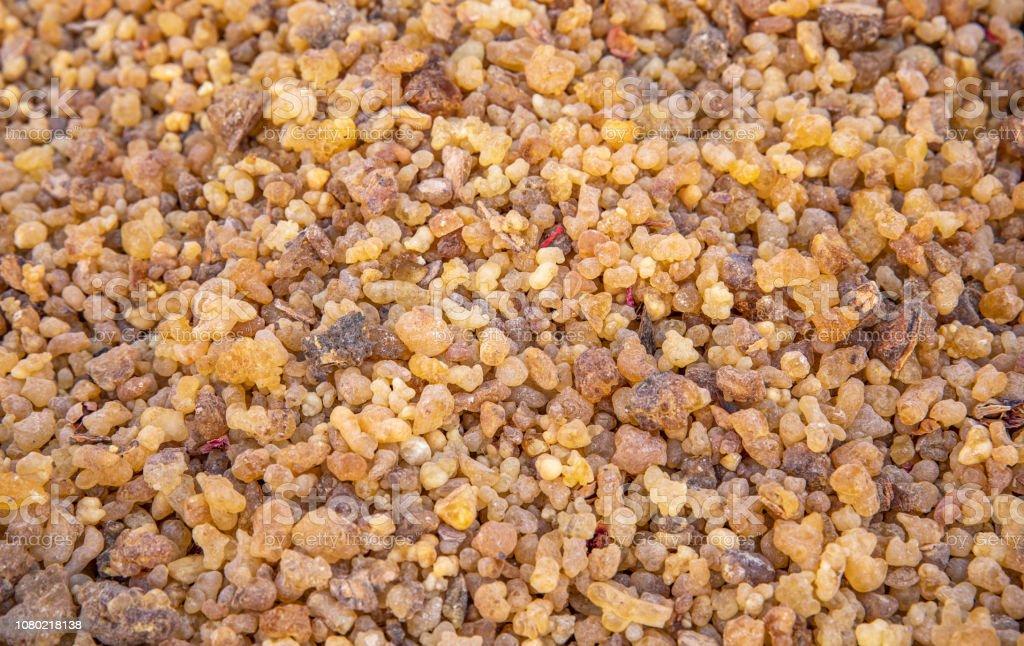 driend frankincense (boswellia serrata) stock photo