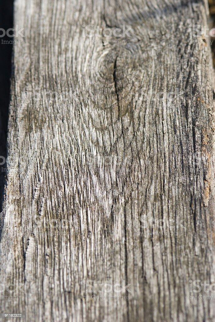 Driftwood 1 royalty-free stock photo