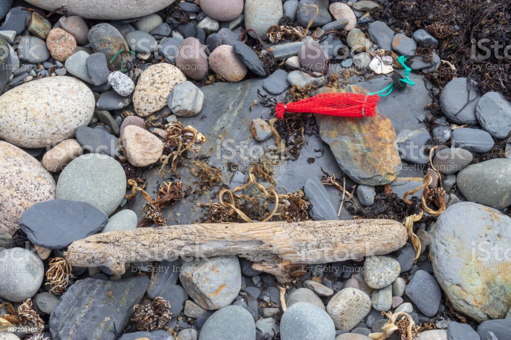 Driftwood and Plastic debris on a shoreline. stock photo