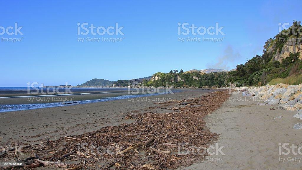 Driftwood at Pohara Beach, New Zealand stock photo