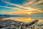 Driftwood at Sunset  - lake Chiemsee, Achendelta