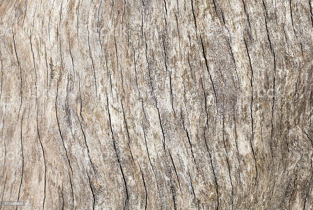 Driftwood Background royalty-free stock photo