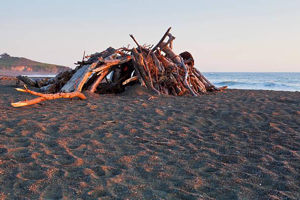 Driftwood beach hut stock photo