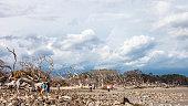 Jekyll Island, Georgia, USA - People enjoying sunny weather at Driftwood beach