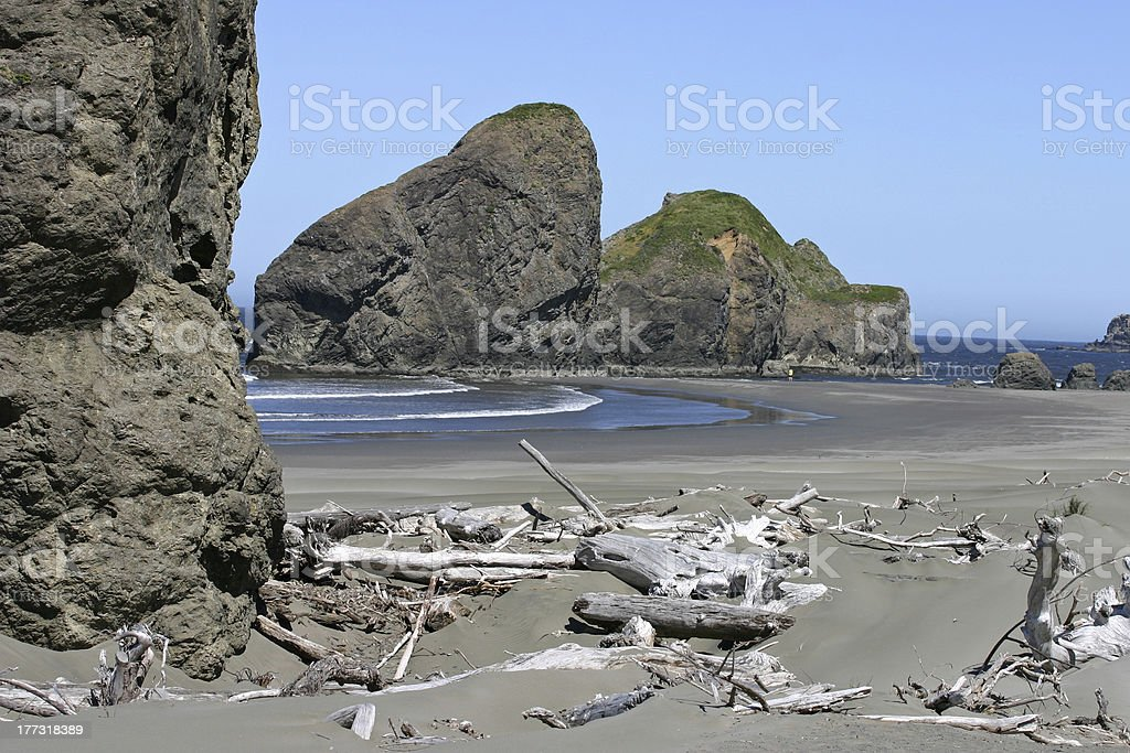 Driftwood, Boulders and the Sea royalty-free stock photo