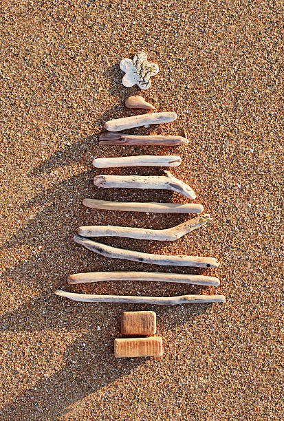 Driftwood Christmas tree on a sandy beach. stock photo
