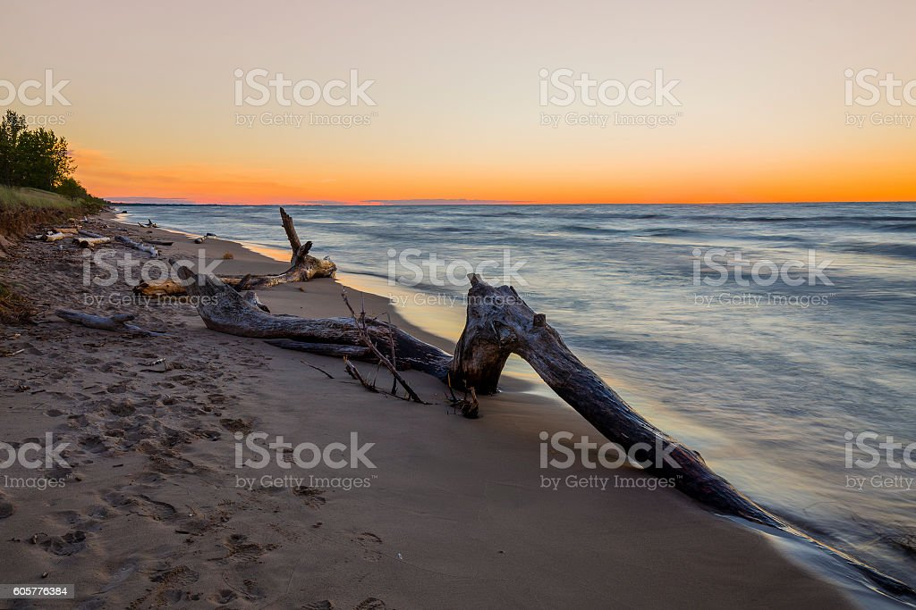 Driftwood on a Lake Huron Beach after Sunset - Canada stock photo