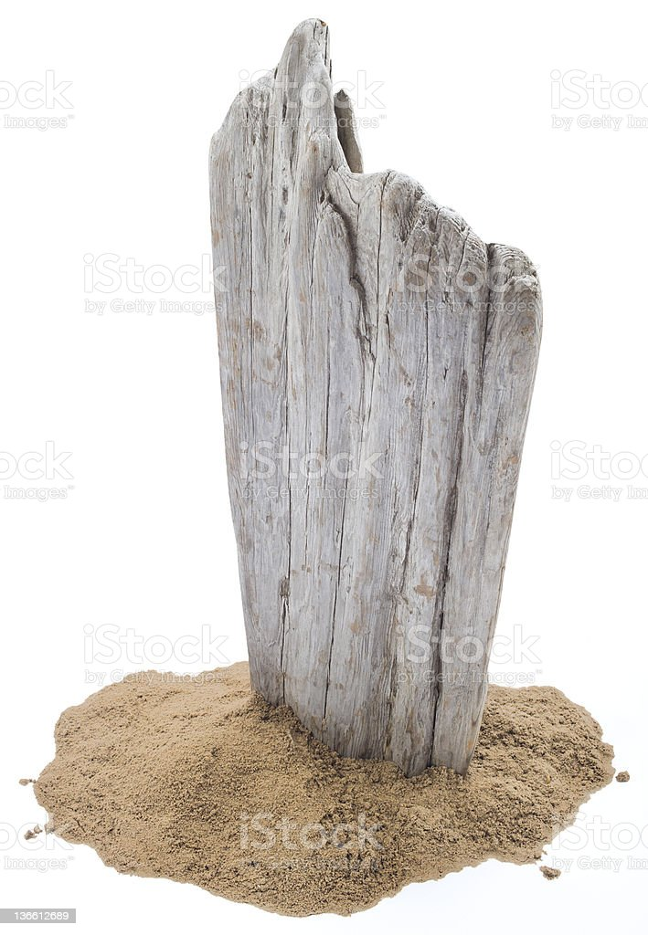 Driftwood on Sand royalty-free stock photo