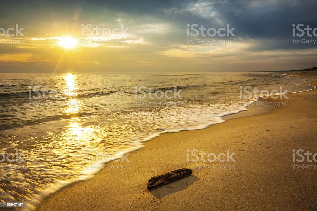 Driftwood on Sandy Beach - Sunset Over the Ocean royalty-free stock photo