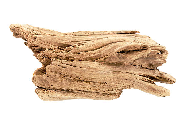 Driftwood on White A piece of driftwood is isolated on a white background. The driftwood is a sandy color. The wood has been very weathered. The edges are rounded and the wood is splitting in several places. This studio shot is up close and uses a bright flash. driftwood stock pictures, royalty-free photos & images