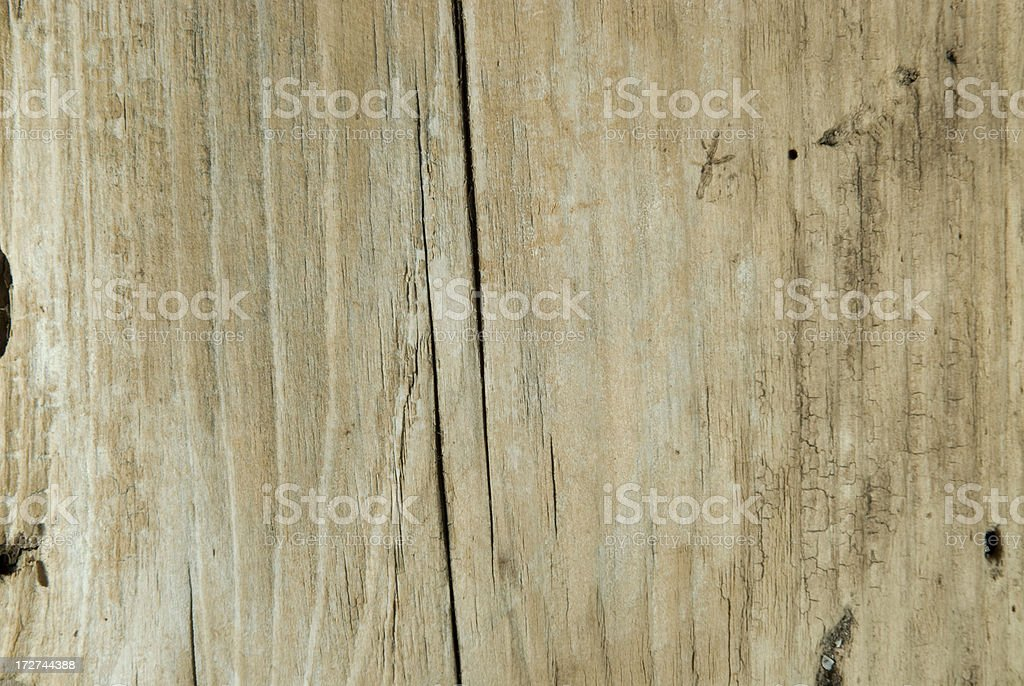 Driftwood Plank royalty-free stock photo