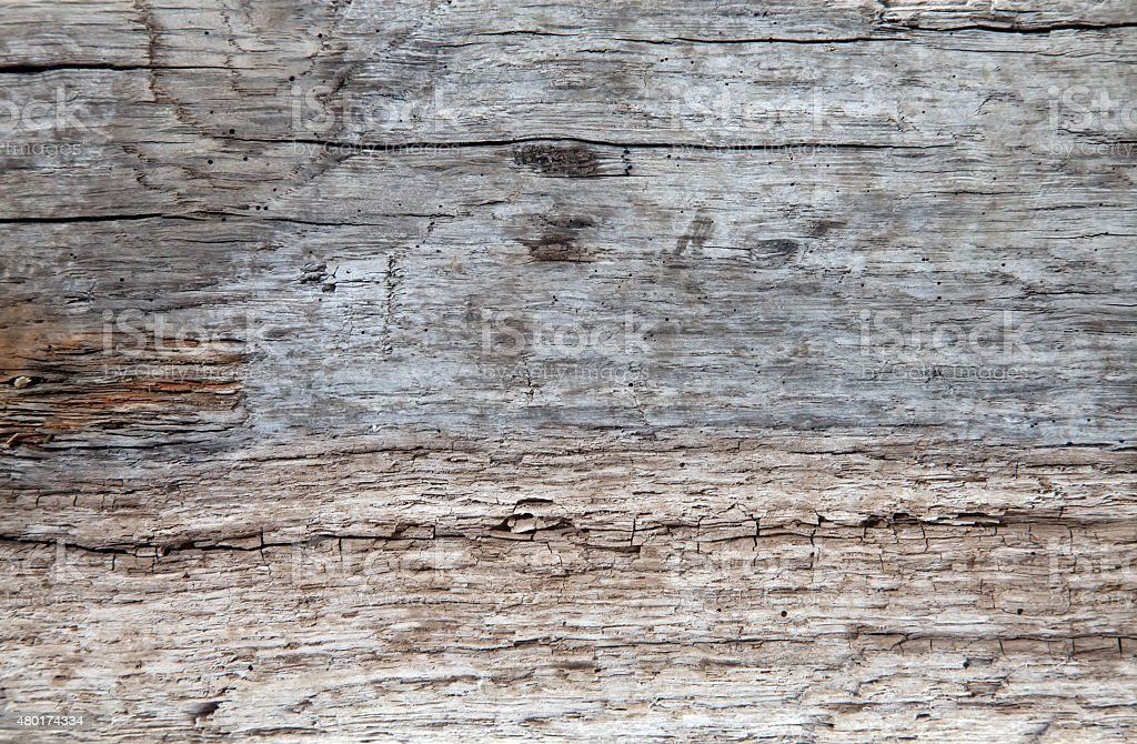 Driftwood texture stock photo