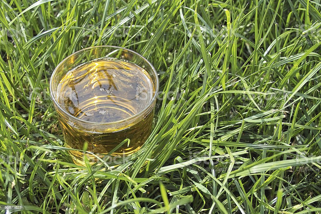 drink in the grass royalty-free stock photo