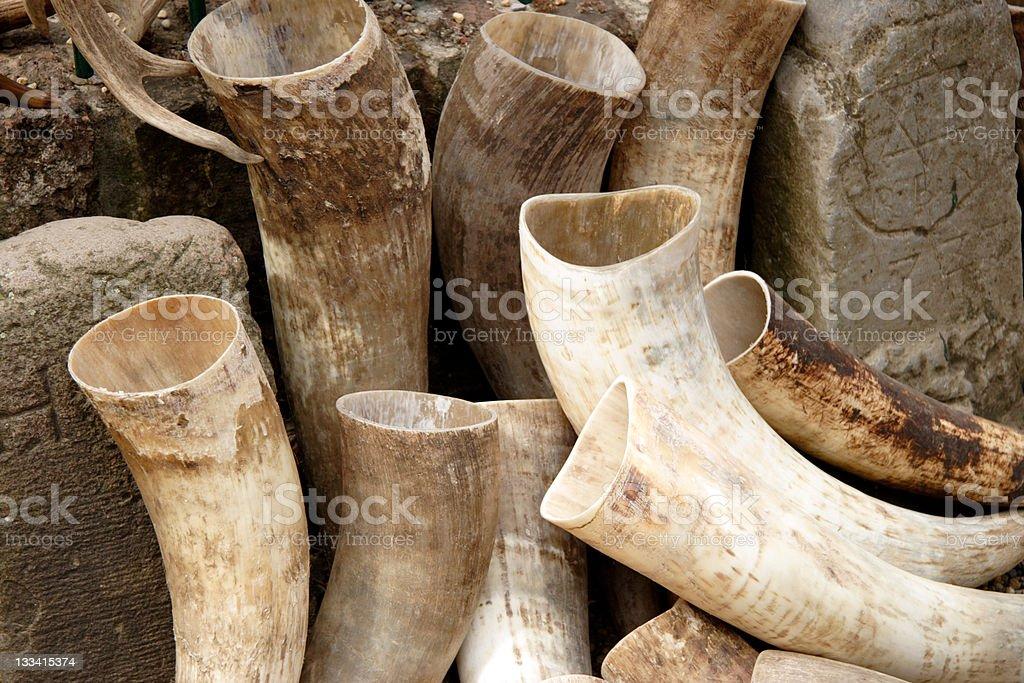Drinking Horns royalty-free stock photo