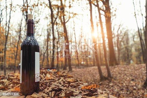 873264516istockphoto Drinking wine in wood autumn season by sunset 934221304