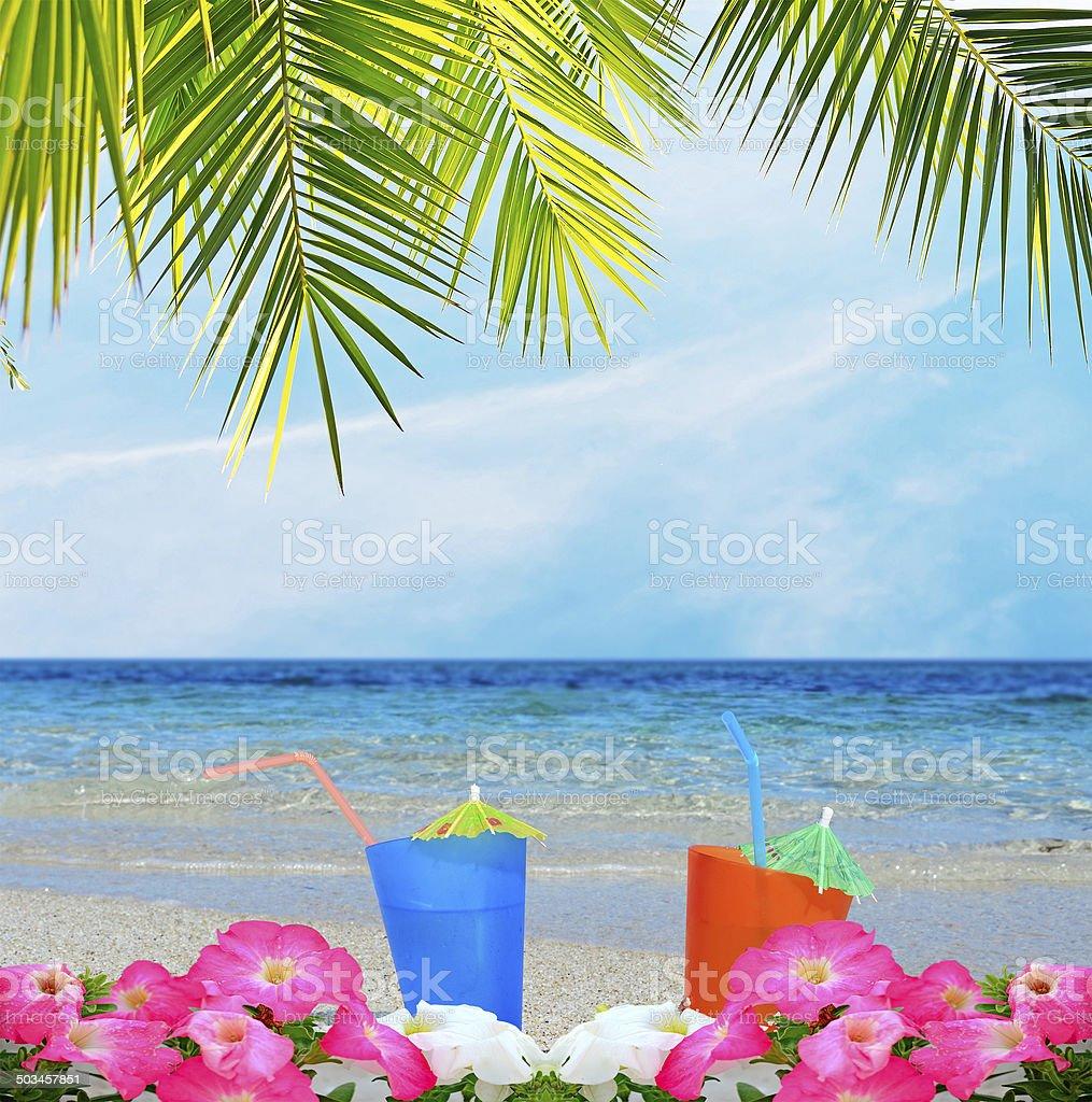 Getränke Palmen Und Blumen Stockfoto 503457851 | iStock
