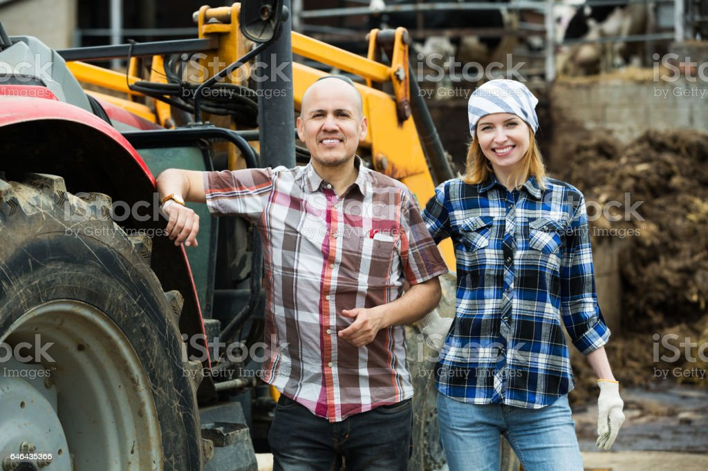 Driver and assistant near harvester stock photo