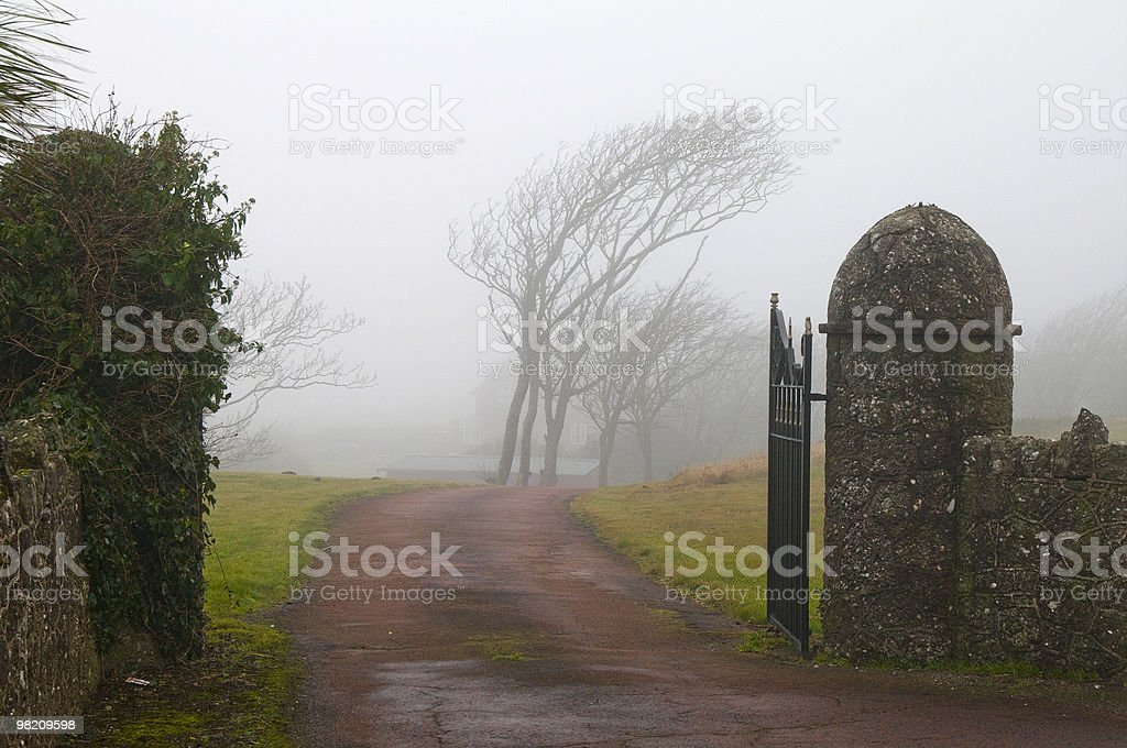 Driveway royalty-free stock photo