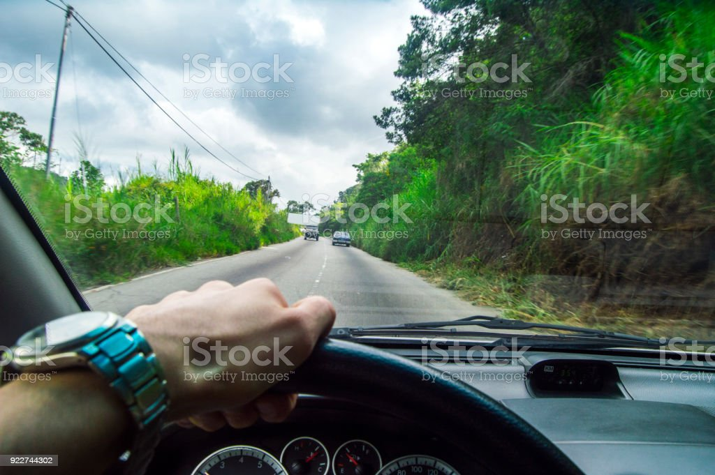 Driving at day, view into the green nature stock photo