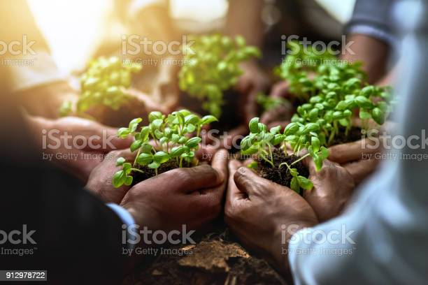 Driving business growth with teamwork picture id912978722?b=1&k=6&m=912978722&s=612x612&h=nbhgc2tifq7gsftabdrfjh6 e1l czbrsmdsbcqjanm=