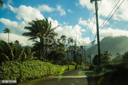 Hawaii, kauai island, road. tropical landscape,Photo was taken in the car
