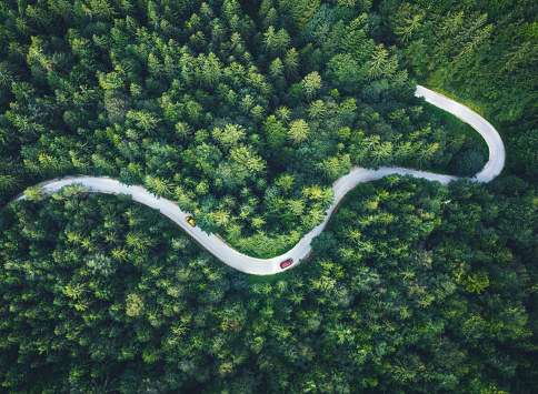 Cars driving on Idyllic winding road through the green forest.