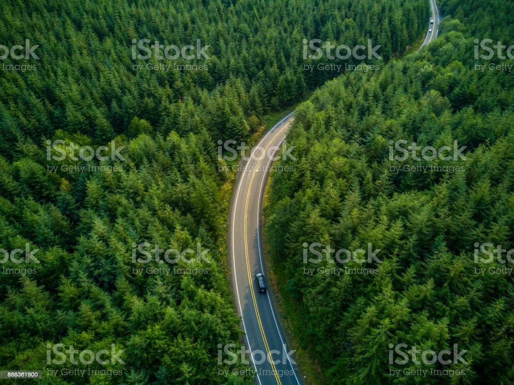 Conducción a través del bosque - vista aérea - foto de stock