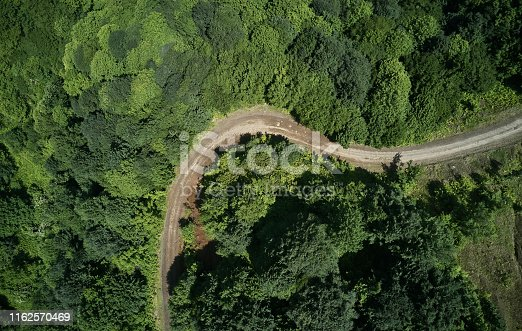 888361900 istock photo Driving Through Forest 1162570469