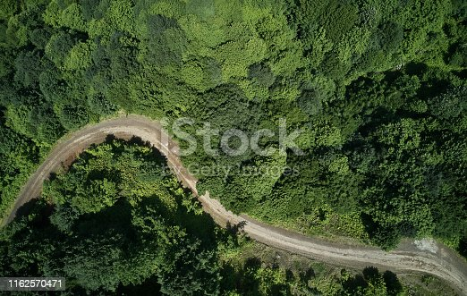 888361900 istock photo Driving Through Forest 1162570471