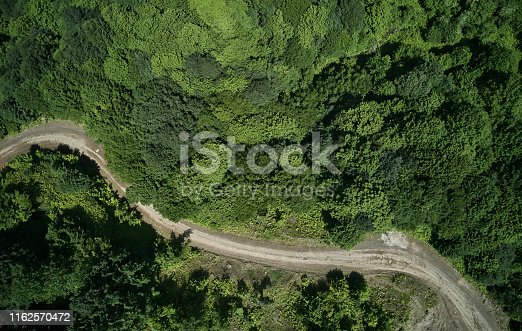888361900 istock photo Driving Through Forest 1162570472