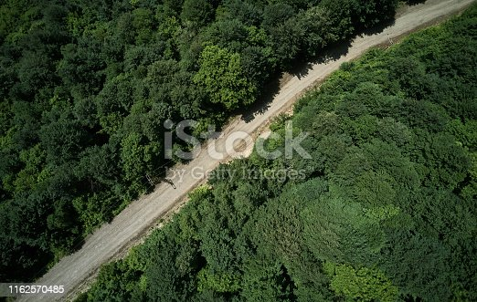 888361900 istock photo Driving Through Forest 1162570485