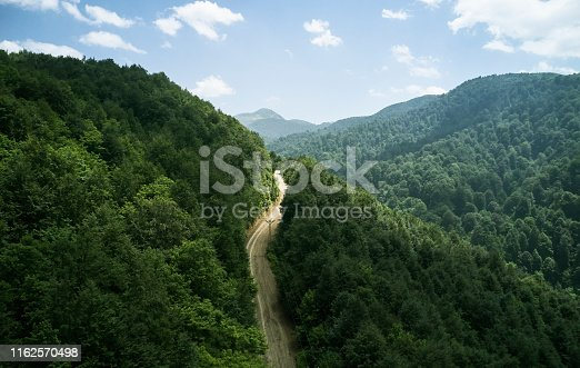 888361900 istock photo Driving Through Forest 1162570498