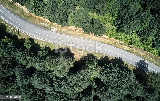 888361900 istock photo Driving Through Forest 1162570505