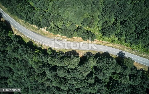 888361900 istock photo Driving Through Forest 1162570509